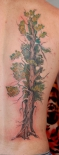tree_tattoos_arm