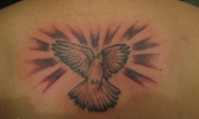 dove-tattoo-118246713413665