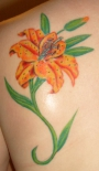 water_lilly_tattoo_63