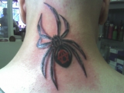 3d_spider_tattoo