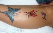 butterfly-tattoo-117306979611556