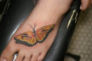 elegant-girls-butterfly-foot-tattoo-design-for-2011