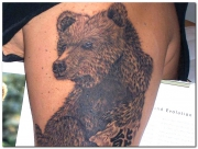 bear-tattoo-designs-pictures-13