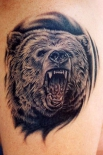 bear-tattoos-designs