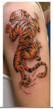 tiger-tattoo-designs-8