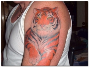 tiger-tattoo-designs-pictures-4
