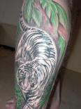 white-tiger-tattoo-102520