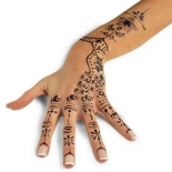 f9628cf3ca225590_henna_tattoo_right_500_94419
